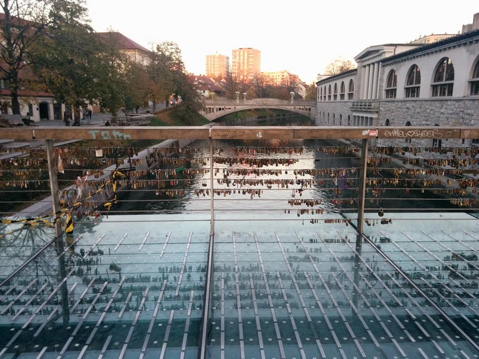 Gobi found a bridge full of locks in Ljubljana!