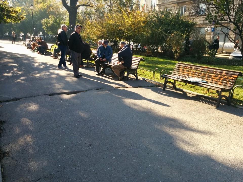 Old Bulgarian Men Playing Chess, one looking at Gobi, as Gobi takes their photo